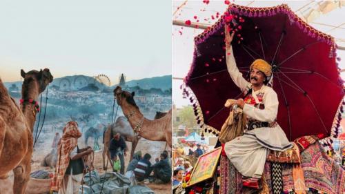 Pushkar Mela : a gorgeous mix of colours