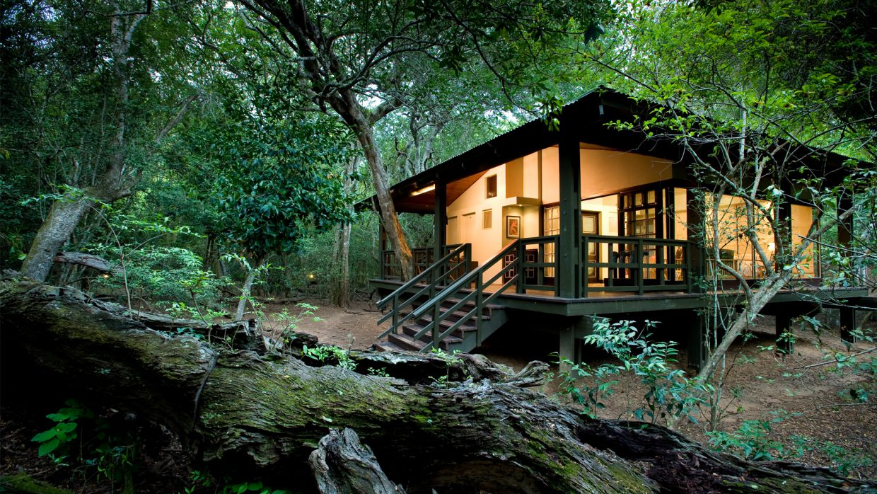 7 Best Tree House Resorts in India