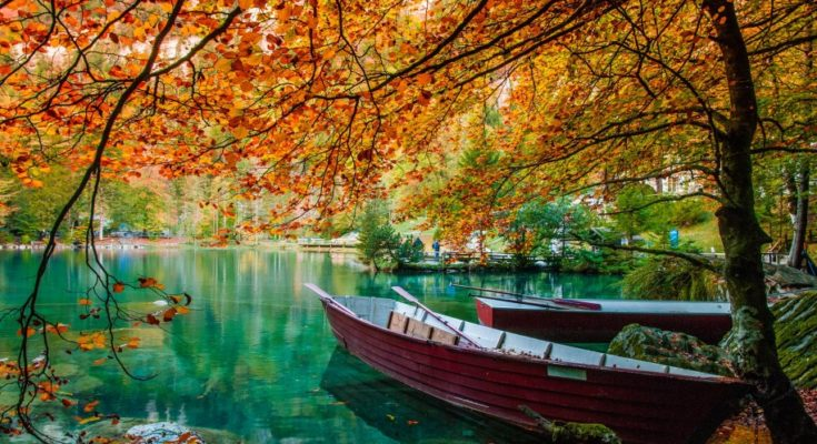 Autumn 2018 � See And Experience Beautiful Colors